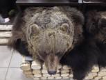 Ковер медвежий с головой №5 - купить (заказать), узнать цену - Охотничий супермаркет Стрелец г. Екатеринбург