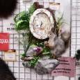 Чучело Белки на камне с часами - купить (заказать), узнать цену - Охотничий супермаркет Стрелец г. Екатеринбург