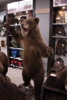 Чучело Медведя в полный рост средний - купить (заказать), узнать цену - Охотничий супермаркет Стрелец г. Екатеринбург
