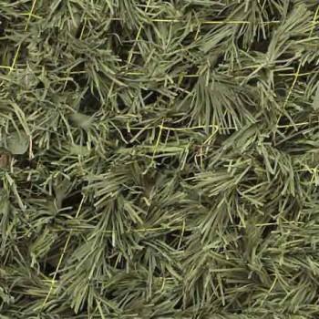 Сеть Папоротник (светло-зеленый) трава (1,5*2 м) (на сетевой основе) - купить (заказать), узнать цену - Охотничий супермаркет Стрелец г. Екатеринбург