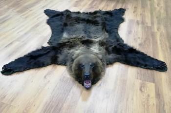 Ковер медвежий с головой №2/1 - купить (заказать), узнать цену - Охотничий супермаркет Стрелец г. Екатеринбург
