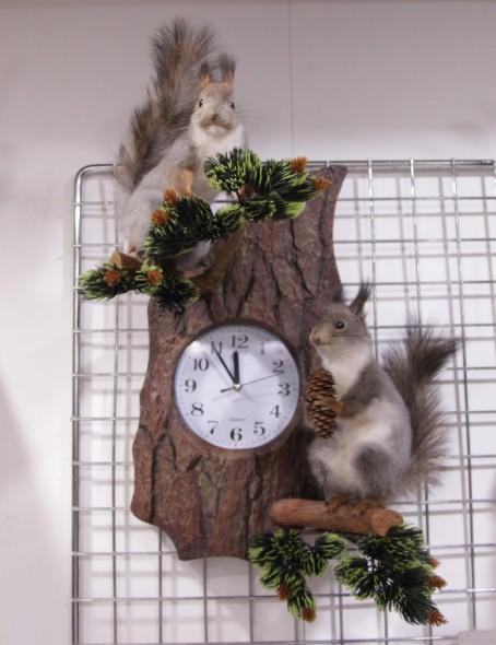 Чучело Белки  с часами  - купить (заказать), узнать цену - Охотничий супермаркет Стрелец г. Екатеринбург
